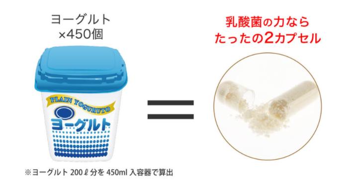 乳酸菌の力